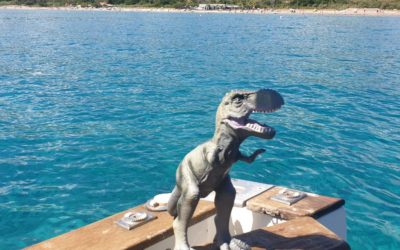 Hector en Vacance d'été !